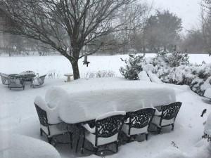 SnowstormJan242016