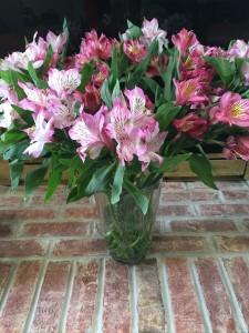 FlowersAlstrumeriaMarch2016