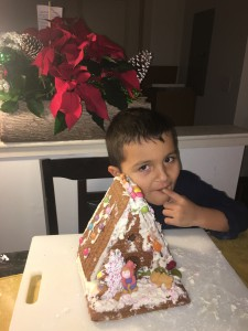 riangingerbreadhousedec2016