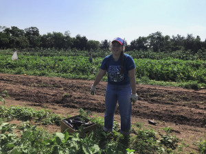 new-jersey-harvesting-produce-for-bentley-community-services_35693585613_o