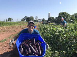 new-jersey-harvesting-produce-for-bentley-community-services_35693586883_o